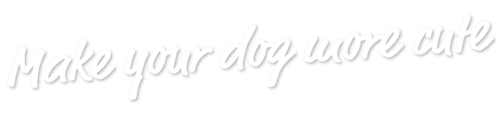 Make your dog more cute